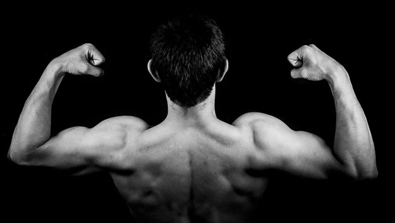 החשיבות של אבקת חלבון עבור ספורטאים